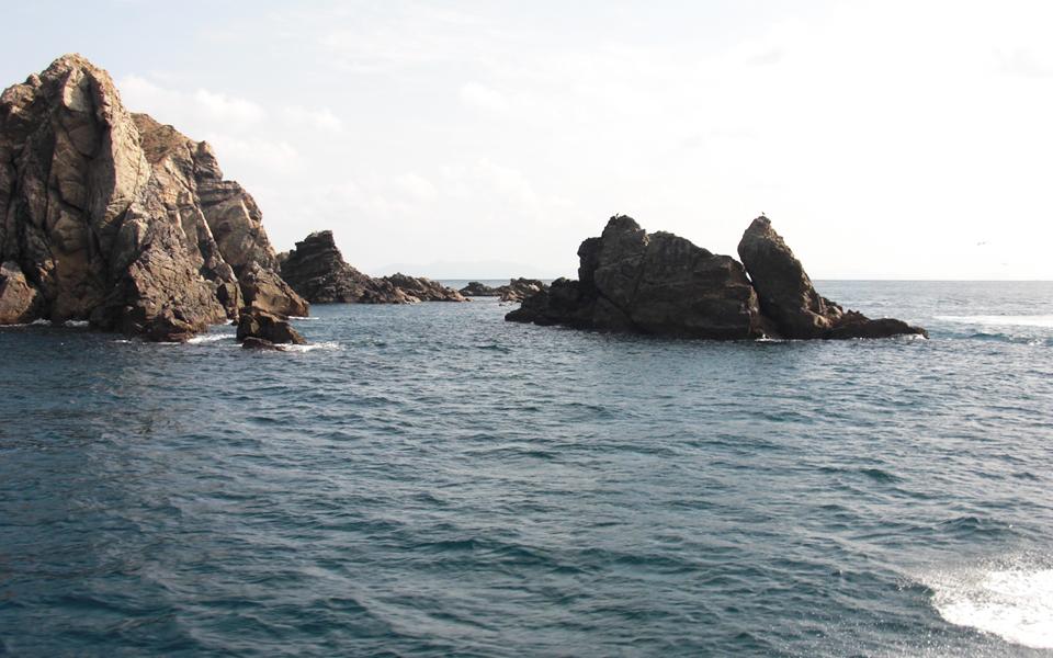 倉島のマンジュウ