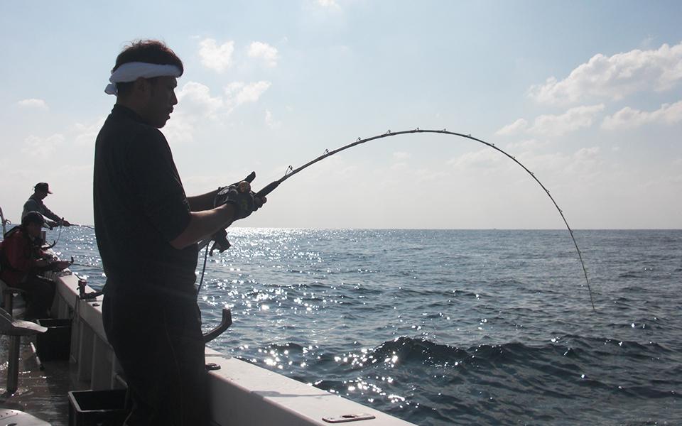 重量感のある魚