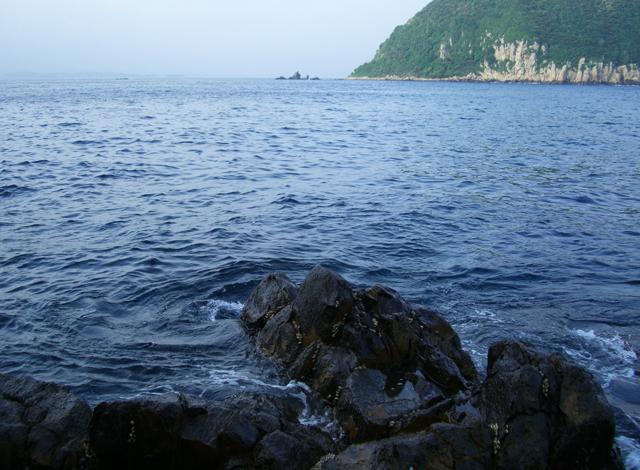 加唐島でバリバリ梅雨グロ