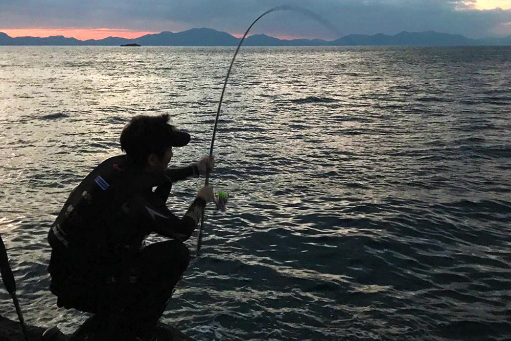 ホゲ島の尾長