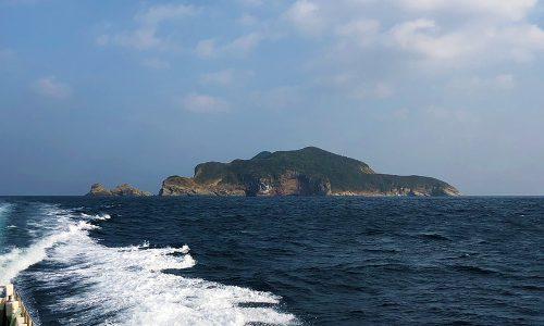 【初釣り】初おろし「マスターモデルⅡ口太MH」で50センチオーバー!
