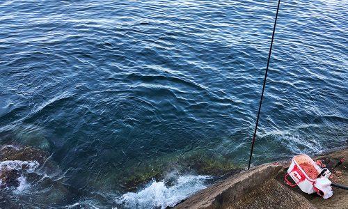 盆休みのイサキとクロ釣り(松島・加唐島)