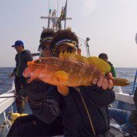 タイラバで高級魚ゲット!