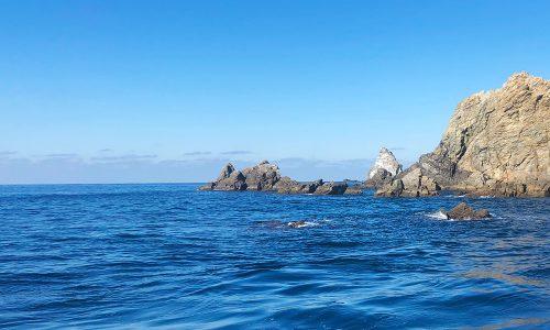 倉島(マンジュウ)