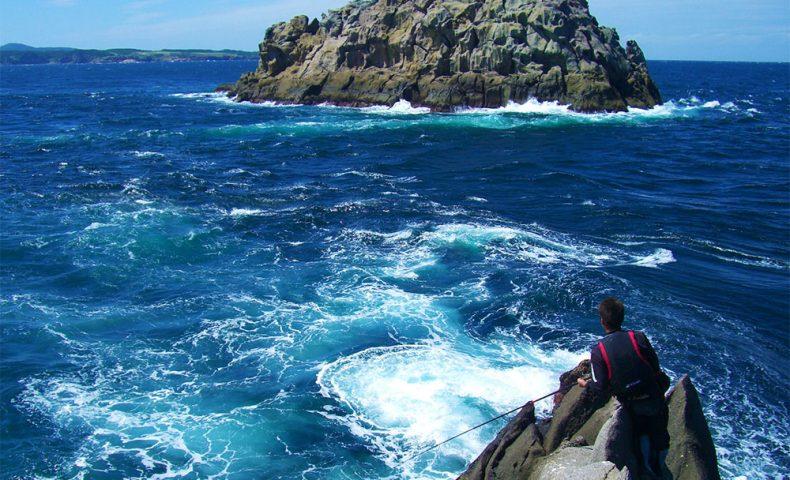 古志岐三礁(ラクダ瀬)の湧きグレ