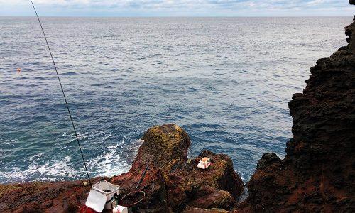 寒グロシーズンへ突入、古志岐三礁(カンバン下)の尾長