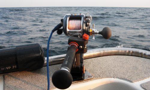 落とし込み釣りで大物狙い