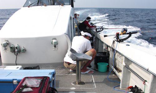 落とし込み釣り(沖の島~大島沖)