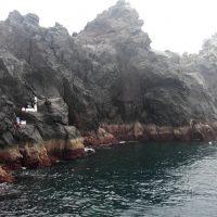悪天候の中、古志岐三礁(北東のカド)で良型オナガ