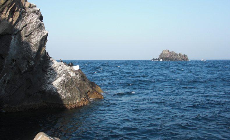 釣り納めは、古志岐三礁(ロープ下横)