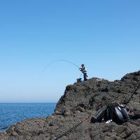 GFGチヌ釣り大会(真立島)