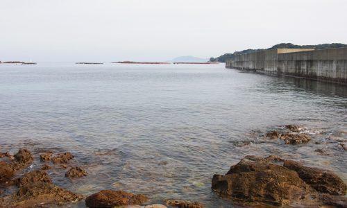 リベンジ、鷹島のノッコミ黒鯛