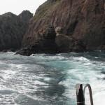 春季懇親釣り大会(下阿値賀島)