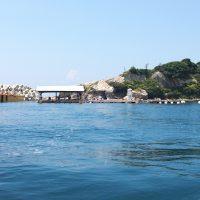 イカダでタコ?鷹島の筏でダゴチン釣り
