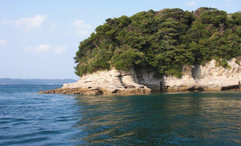 小飛島(西のハナレ)でクロ釣り+秋チヌ