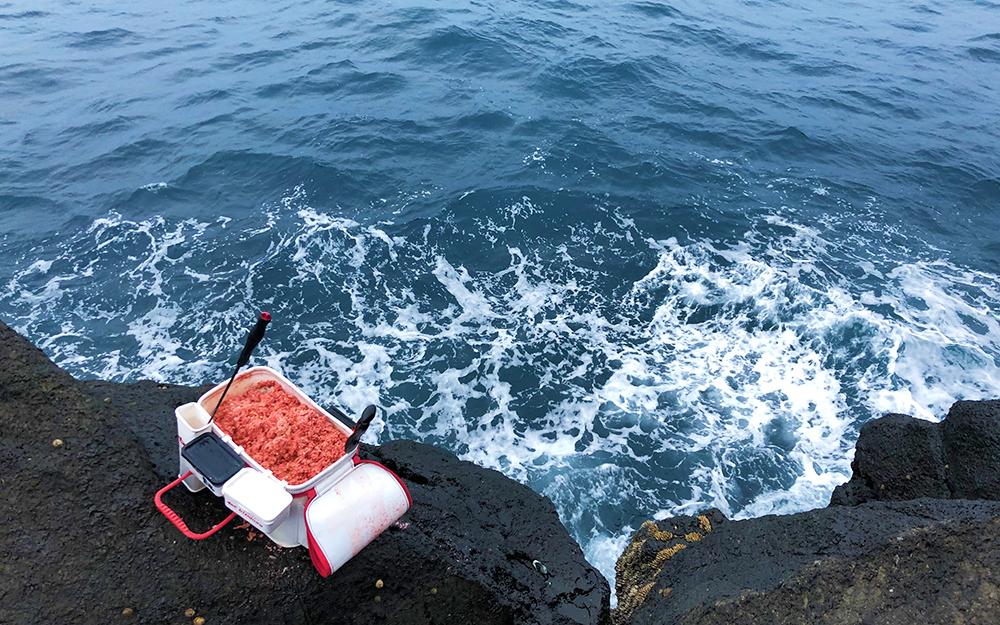 初釣りで寒グロ50枚オーバー!古志岐三礁(スベリ)