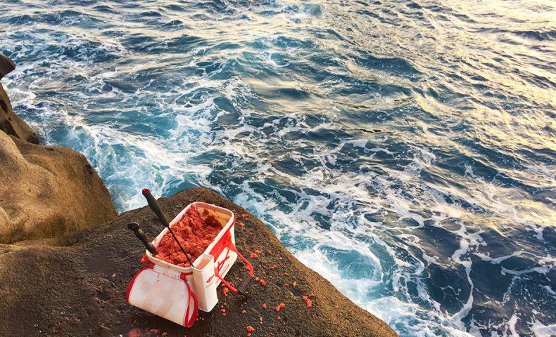 クリスマス釣りーは、イスズミの猛攻、古志岐三礁(ヘタの瀬)