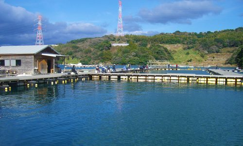 釣りセンター玄海で初釣り
