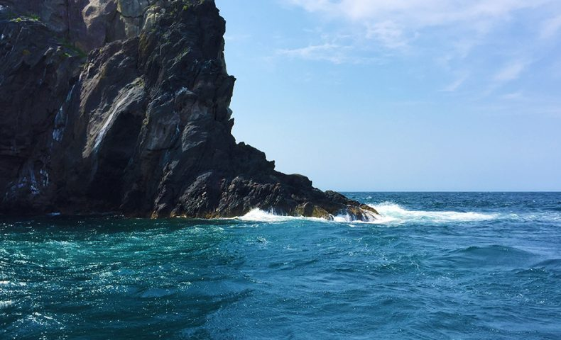 梅雨グロ調査で古志岐三礁(ロープ下)、爆風・サラシ・タカベの3連コンボで撃沈?