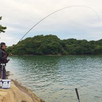 風裏の福島(鵜瀬)で、今年最後の秋チヌ釣行