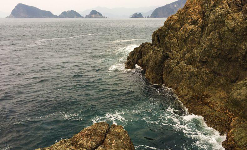 北西の爆風とキタマクラ、米水津(横島4番)
